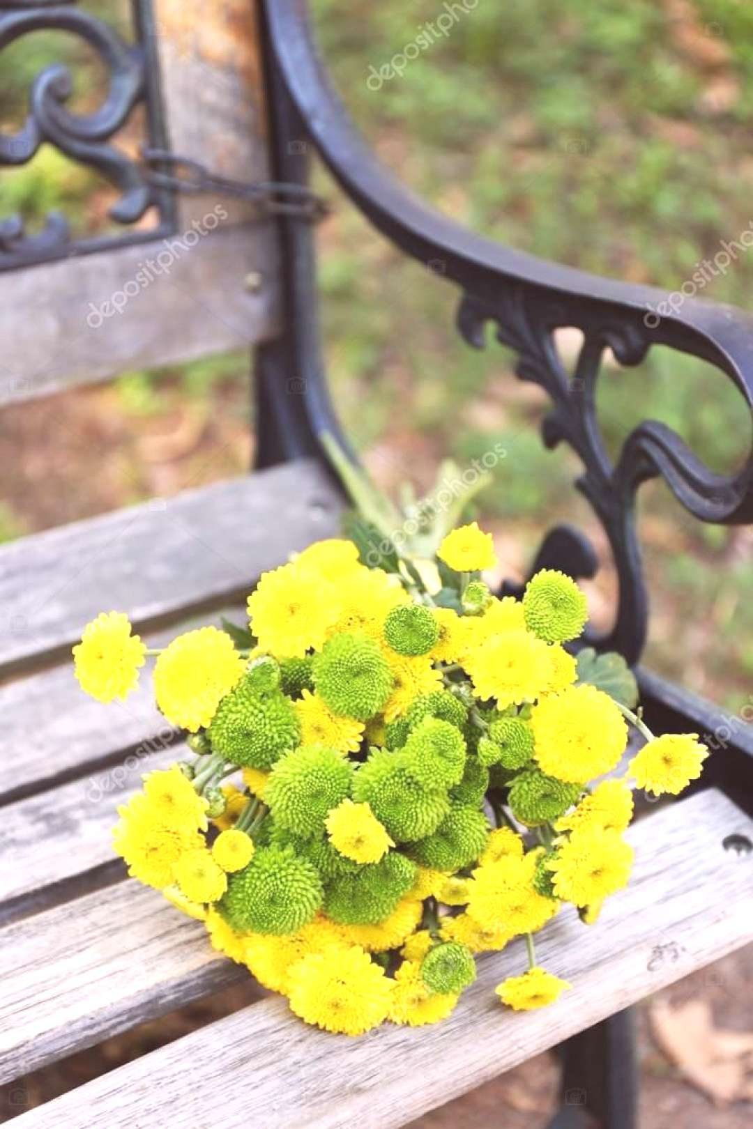 Beautiful bouquet of chrysanthemums flowers on wooden bench in park - Sto ,