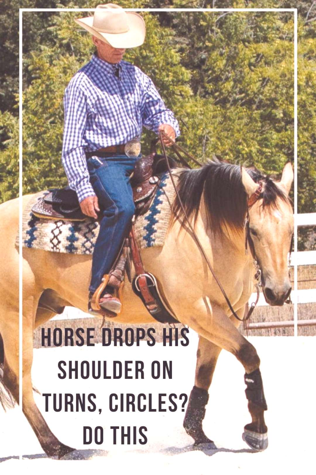 Horse Drops His Shoulder On Turns, Circles? Do This Horse Drops His Shoulder On Turns, Circles? Do