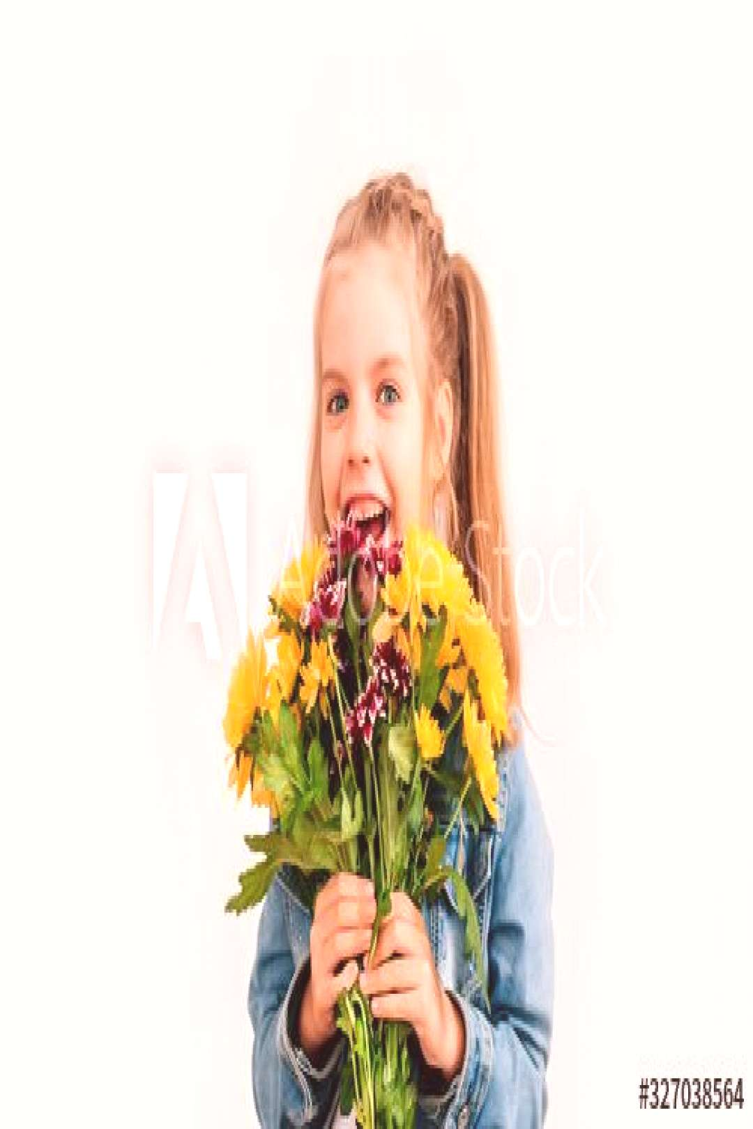 little blonde girl in an blue jacket holds chrysanthemums and gerberas in her hands on a white back